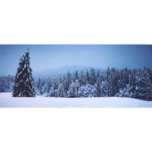 Impression sur dibond plaine et forêt enneigée