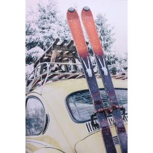 Impression sur dibond coccinelle au ski