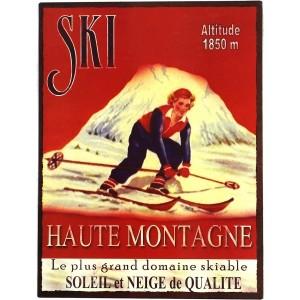 Plaque ski