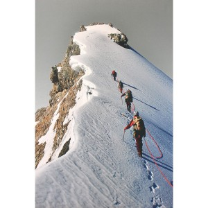 Tableau alpins