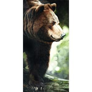 Toile sur chassis ours brun de coté