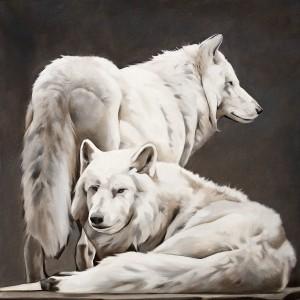 Couple de loup blanc