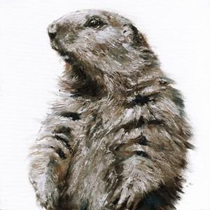 Toile sur chassis marmotte brune