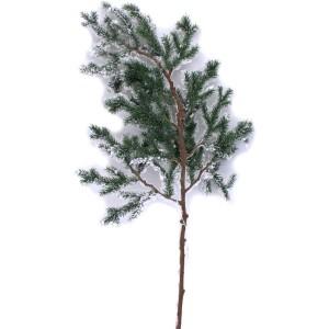 Branche sapin enneigée